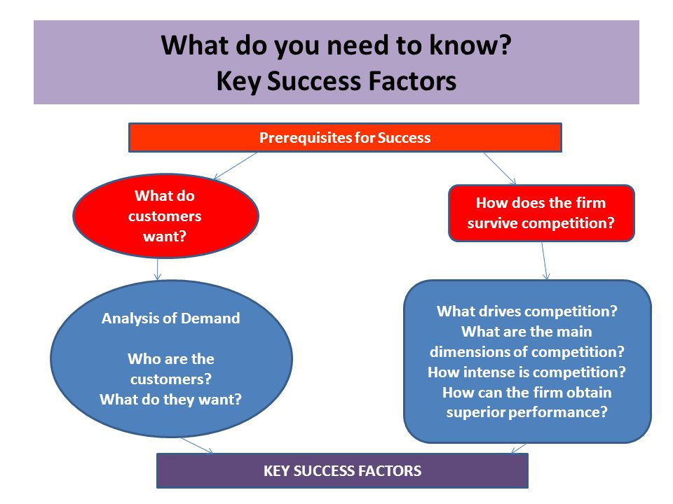 What do you need to know Key Success Factors