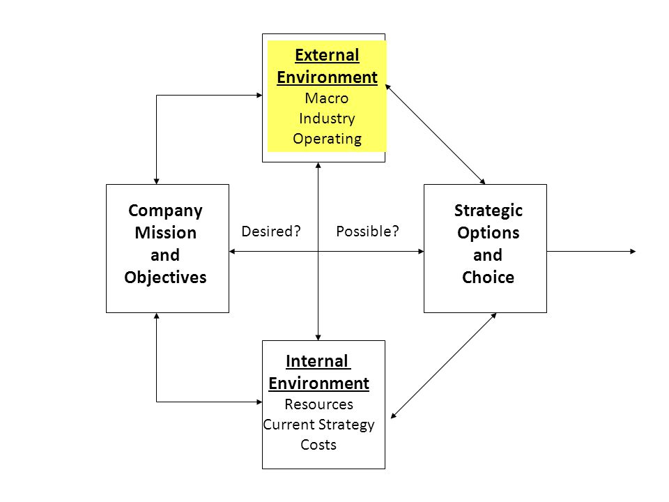 External Environment Company Mission and Objectives Strategic Options