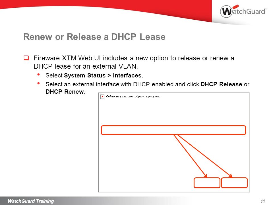 Renew or Release a DHCP Lease