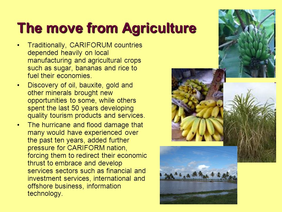 The move from Agriculture