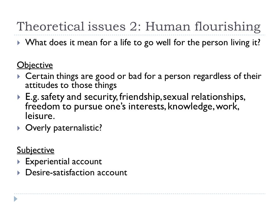 Theoretical issues 2: Human flourishing
