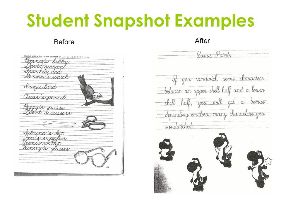 Student Snapshot Examples