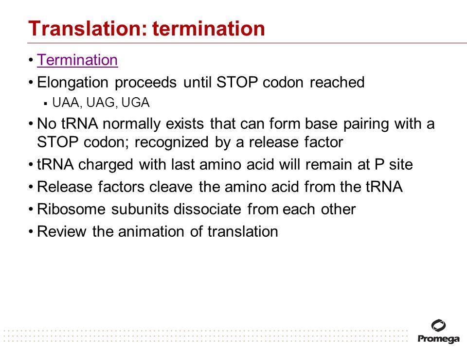 Translation: termination