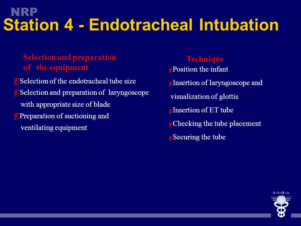 Station 4 - Endotracheal Intubation