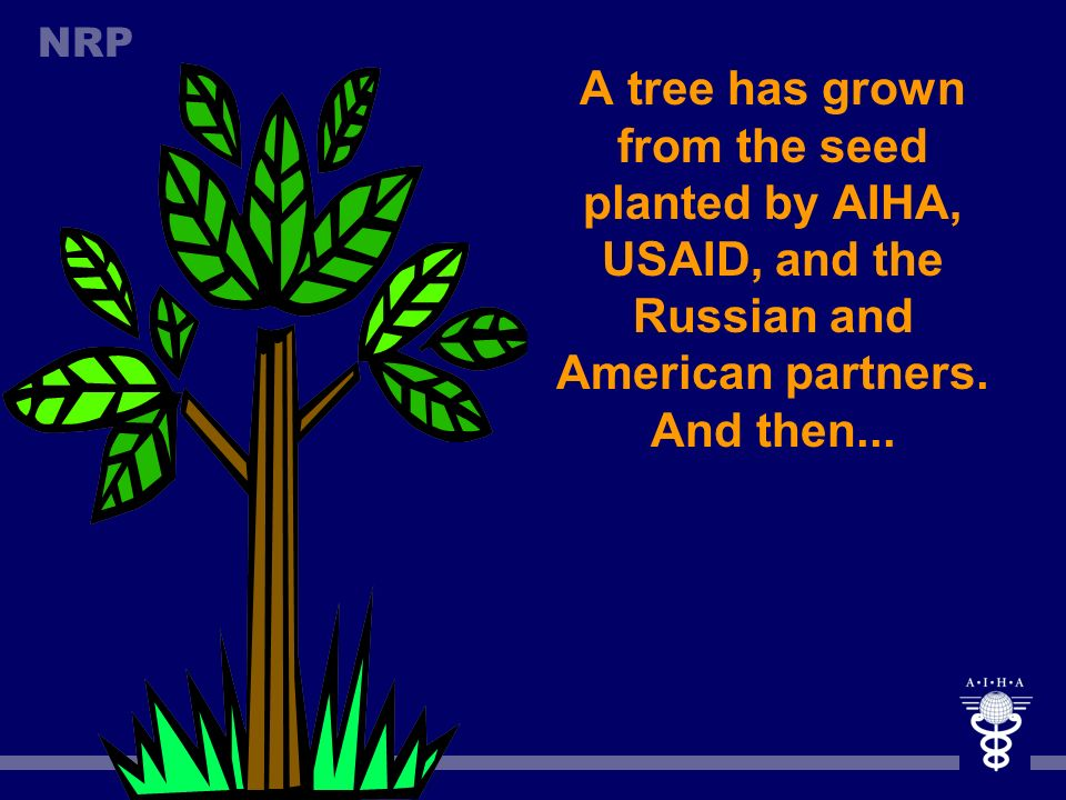 A tree has grown from the seed planted by AIHA, USAID, and the Russian and American partners.