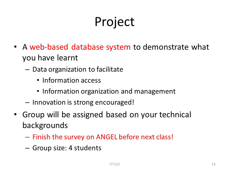 Project A web-based database system to demonstrate what you have learnt. Data organization to facilitate.