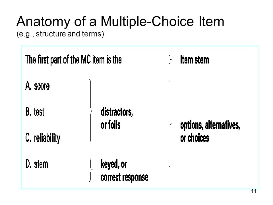 Anatomy of a Multiple-Choice Item (e.g., structure and terms)
