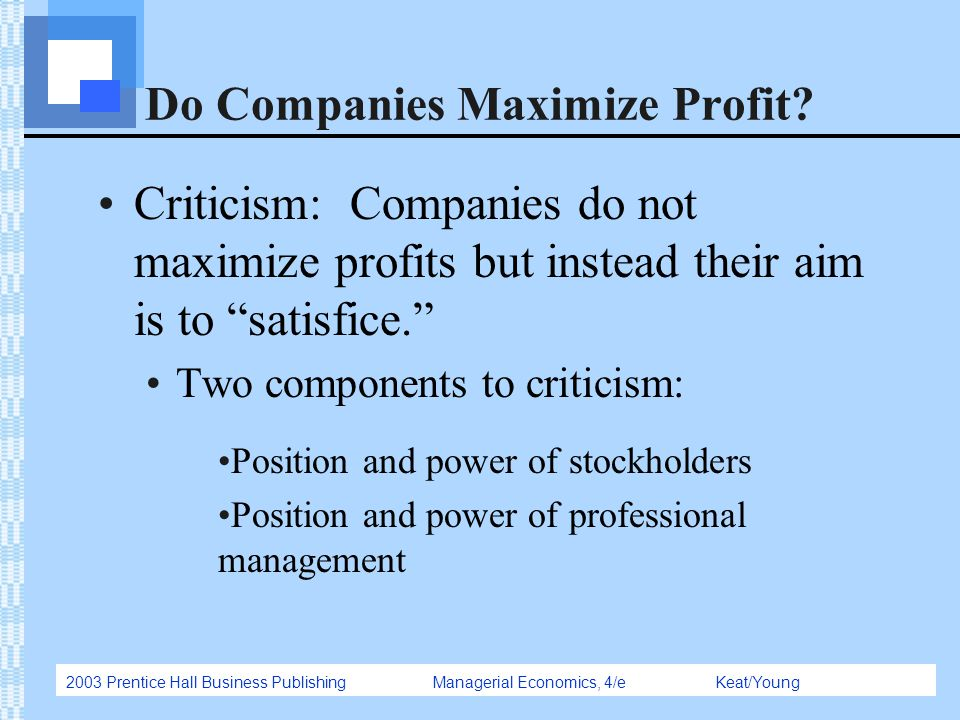 Do Companies Maximize Profit