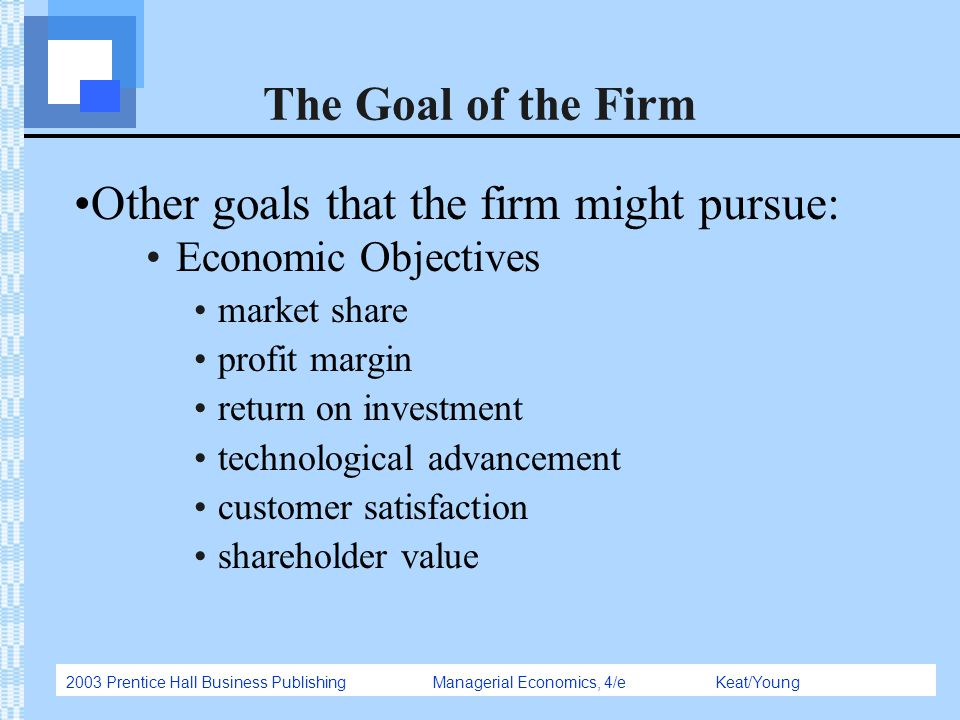 objectives of a firm pdf