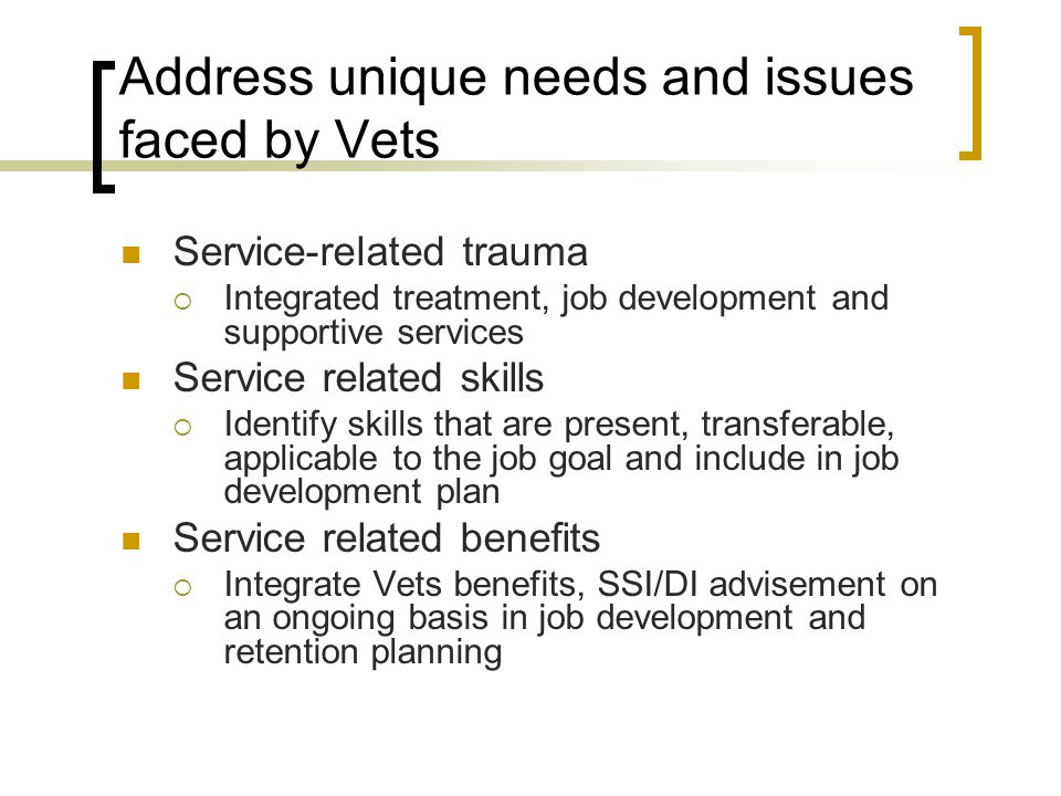 Address unique needs and issues faced by Vets