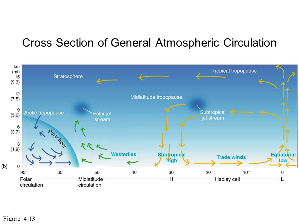 Cross Section of General Atmospheric Circulation