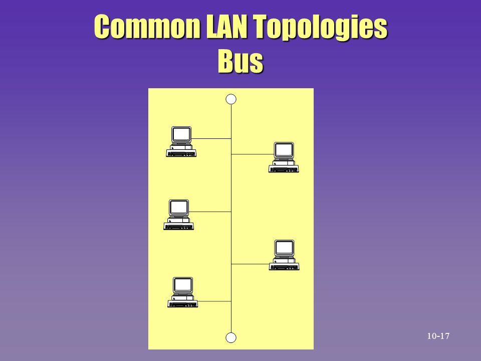 Common LAN Topologies Bus