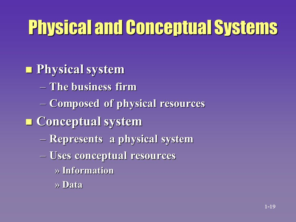 Physical and Conceptual Systems