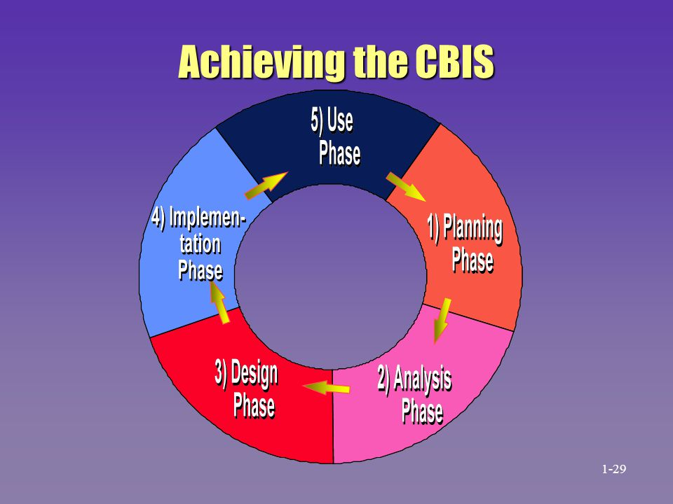 Achieving the CBIS 1-29 31