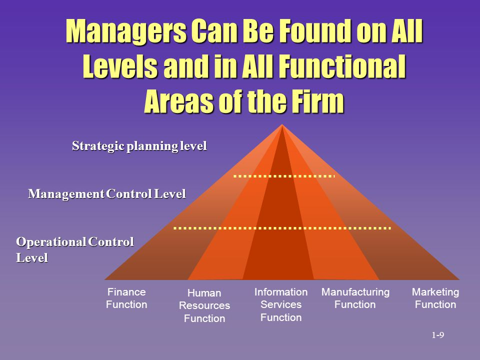 Managers Can Be Found on All Levels and in All Functional Areas of the Firm