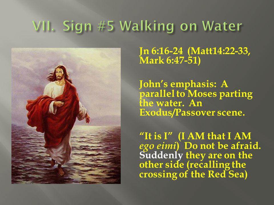 VII. Sign #5 Walking on Water