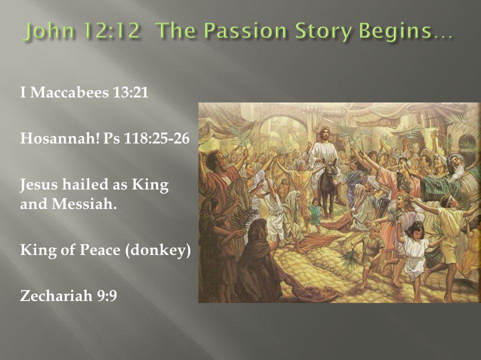 John 12:12 The Passion Story Begins…