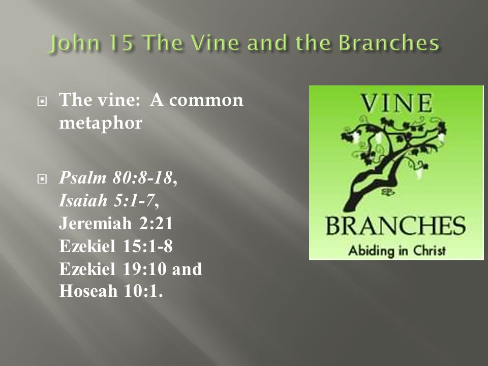 John 15 The Vine and the Branches