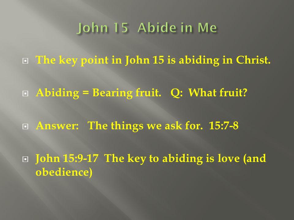 John 15 Abide in Me The key point in John 15 is abiding in Christ.