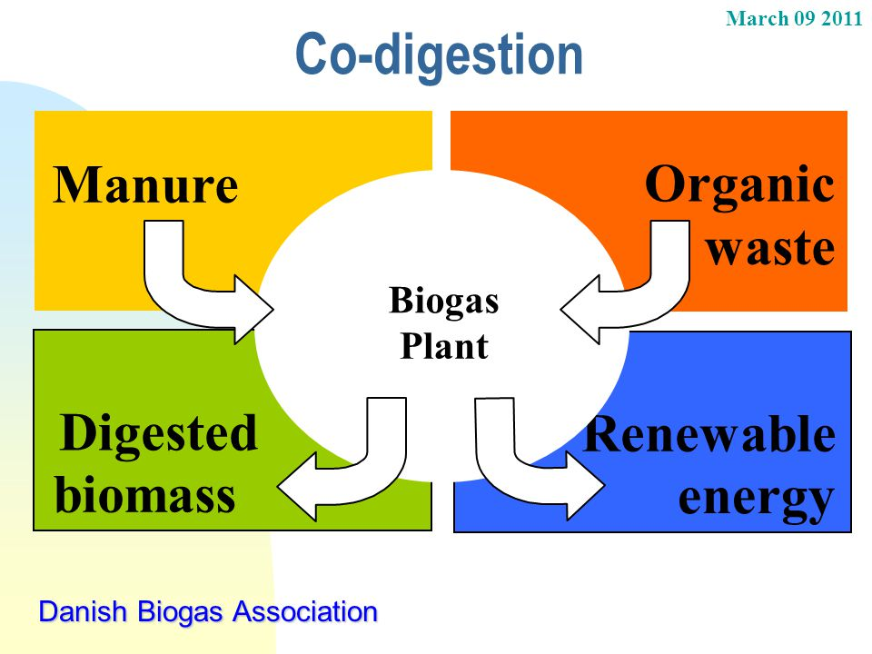 Co-digestion Manure Organic waste Digested Renewable biomass energy