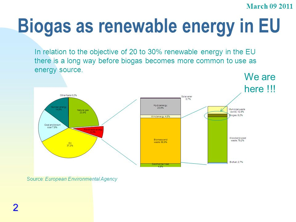 Biogas as renewable energy in EU