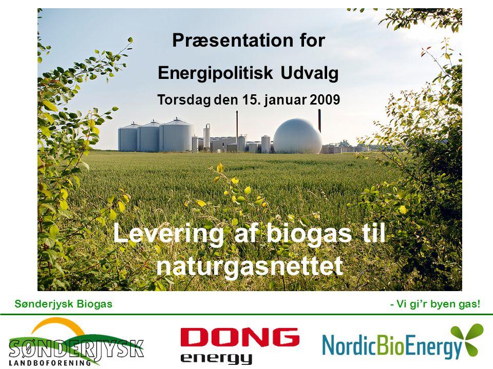 Energipolitisk Udvalg Levering af biogas til naturgasnettet