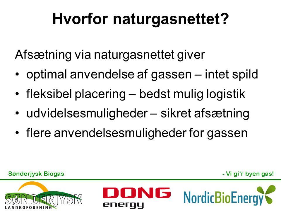 Hvorfor naturgasnettet