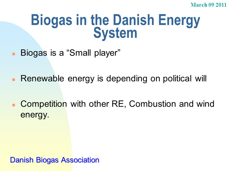 Biogas in the Danish Energy System