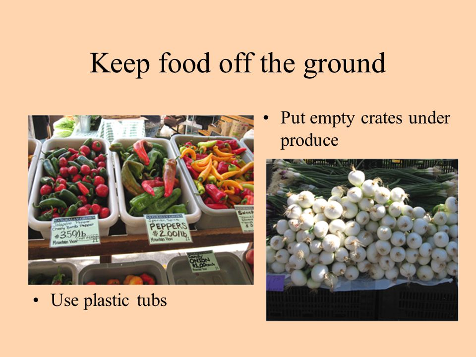 Keep food off the ground