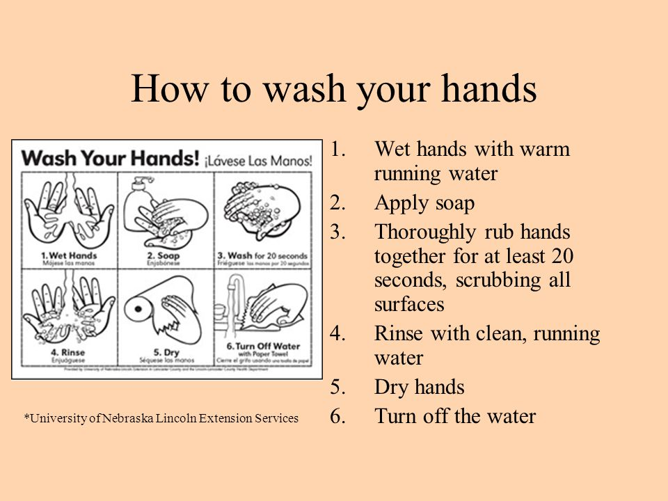 How to wash your hands Wet hands with warm running water Apply soap