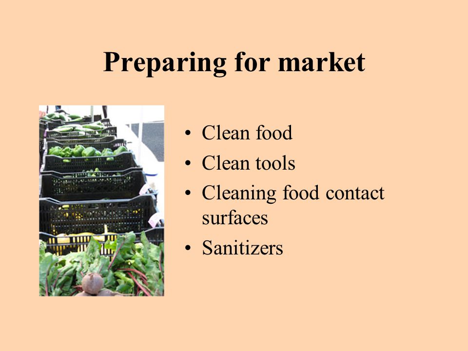 Preparing for market Clean food Clean tools