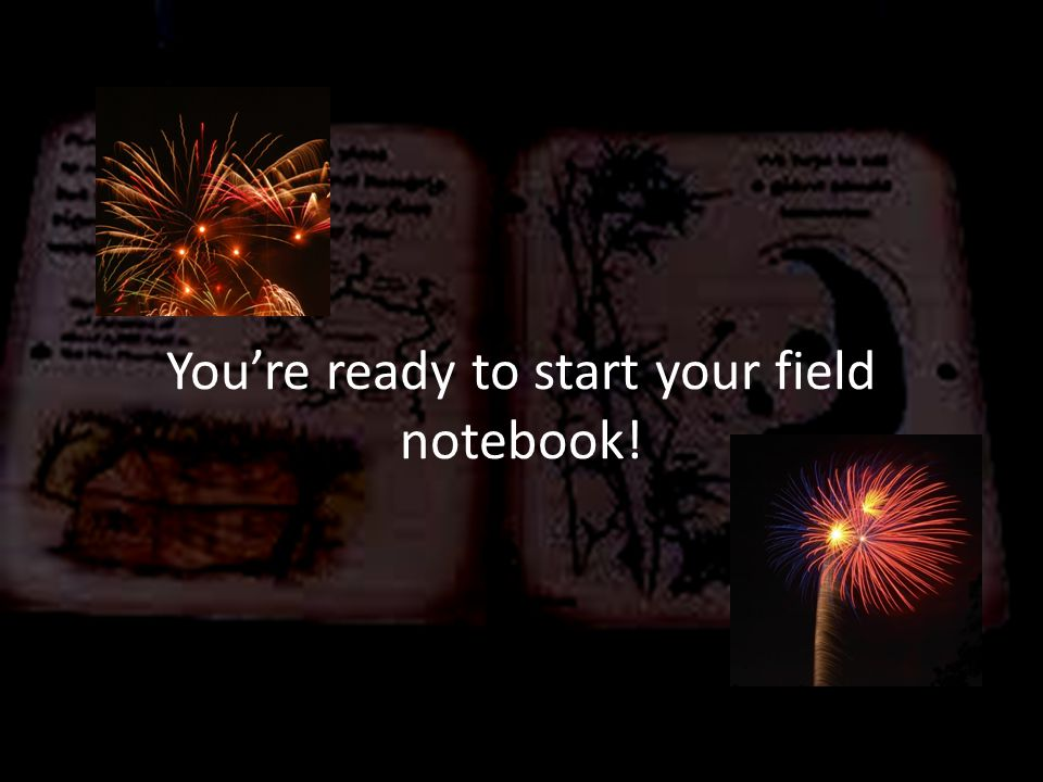 You're ready to start your field notebook!