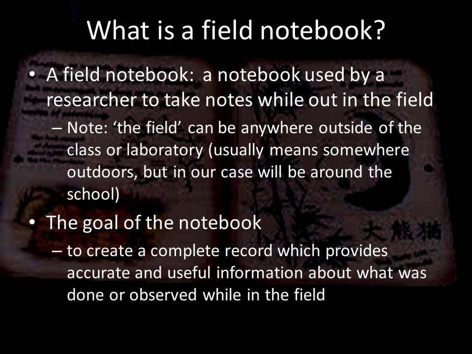 What is a field notebook