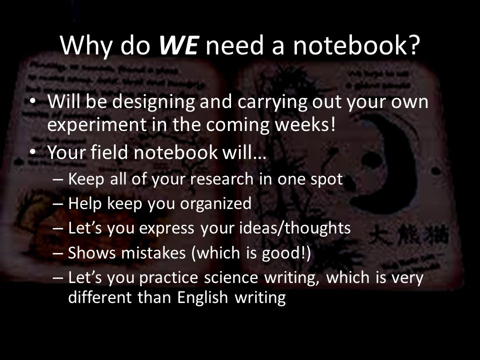 Why do WE need a notebook