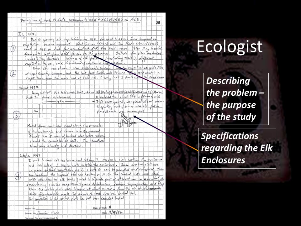 Ecologist Describing the problem – the purpose of the study