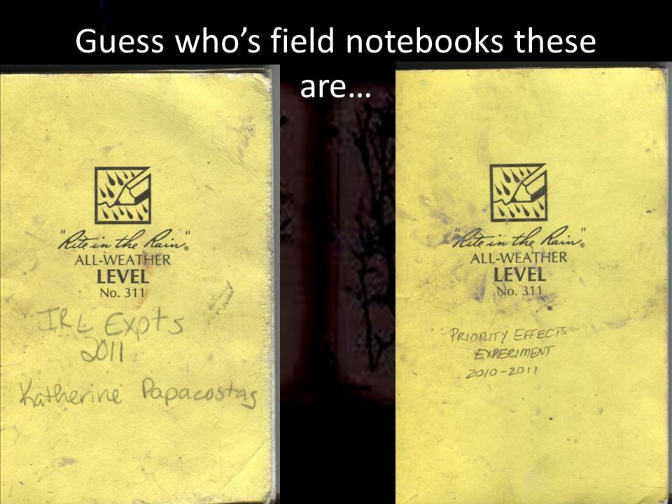 Guess who's field notebooks these are…
