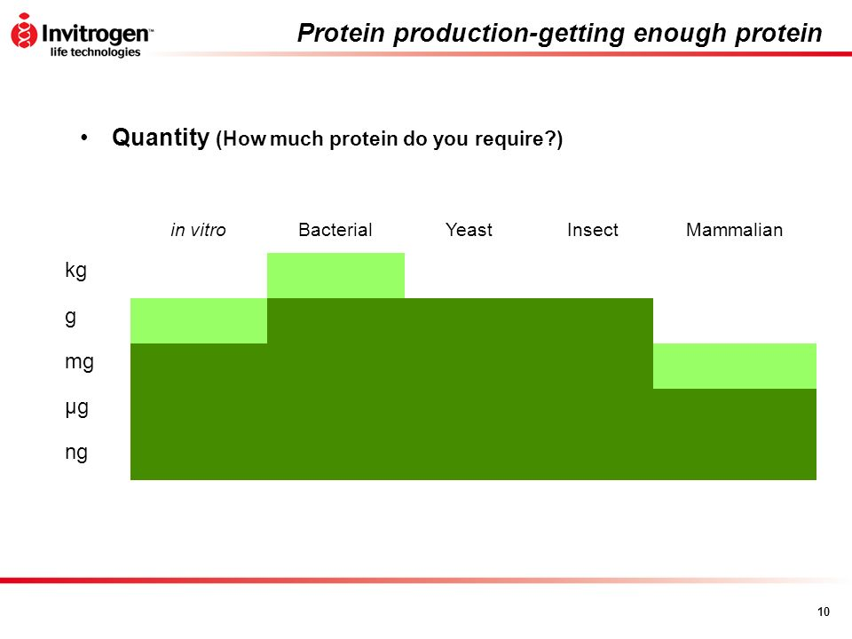 Protein production-getting enough protein