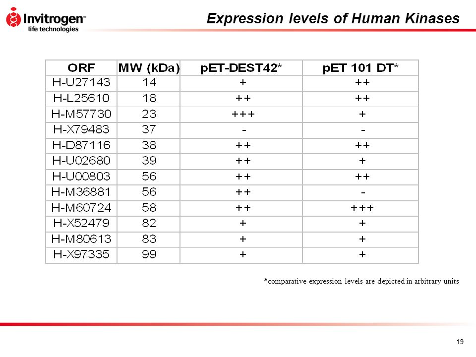Expression levels of Human Kinases