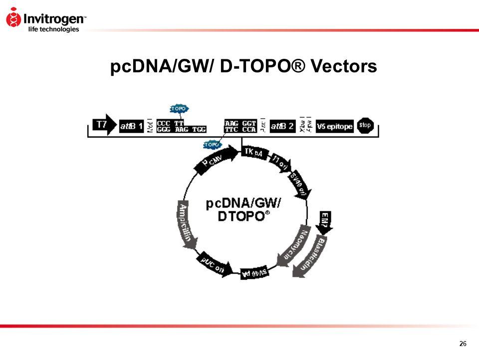pcDNA/GW/ D-TOPO® Vectors