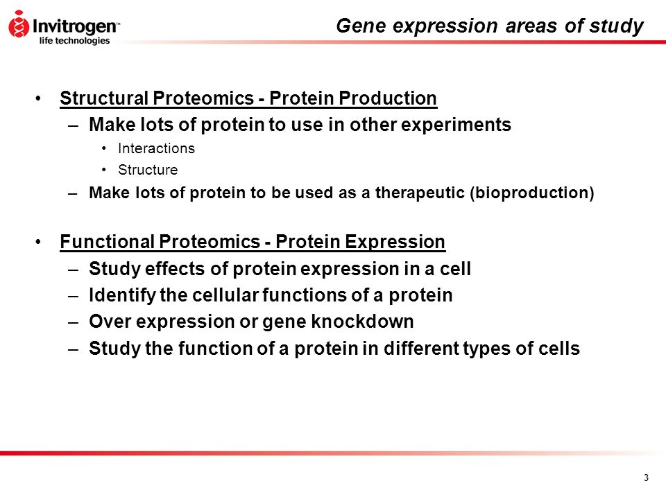 Gene expression areas of study