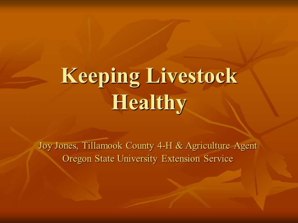 Keeping Livestock Healthy