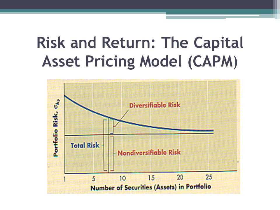 Risk and Return: The Capital Asset Pricing Model (CAPM)