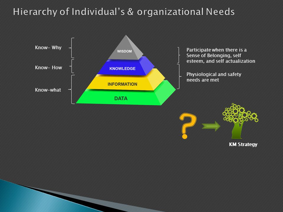 Hierarchy of Individual's & organizational Needs