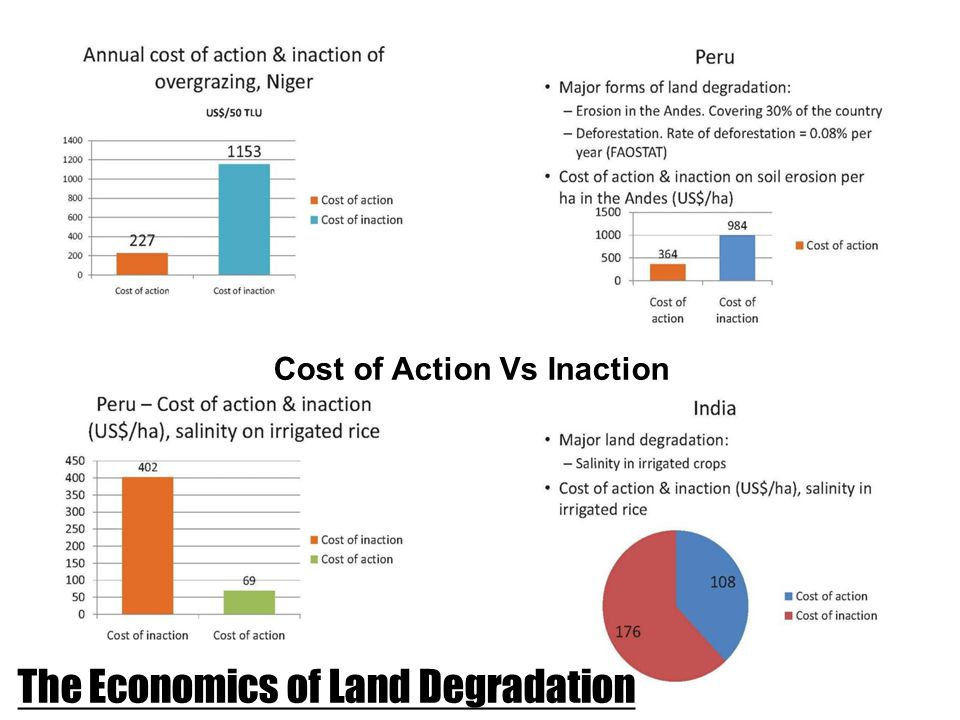 The Economics of Land Degradation