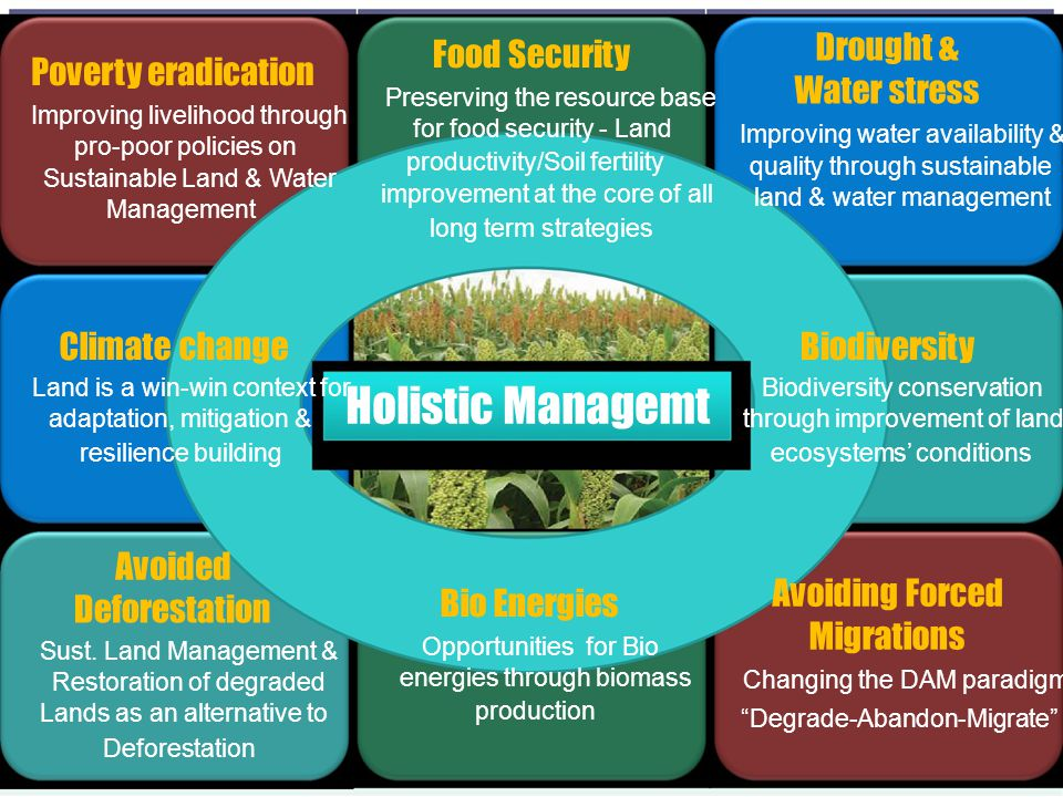 Holistic Managemt Drought & Water stress Food Security