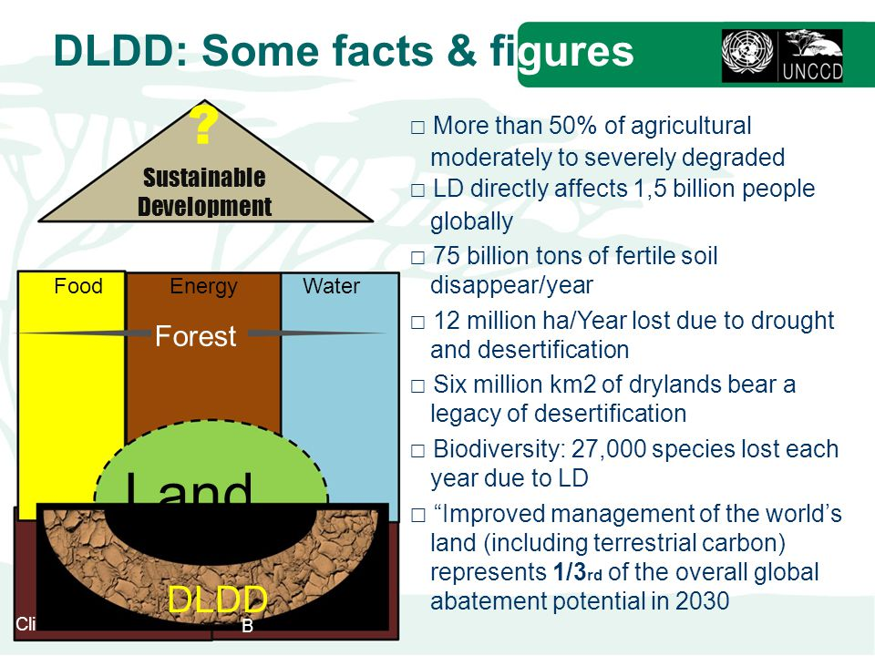 Land DLDD: Some facts & figures DLDD Forest Sustainable Development