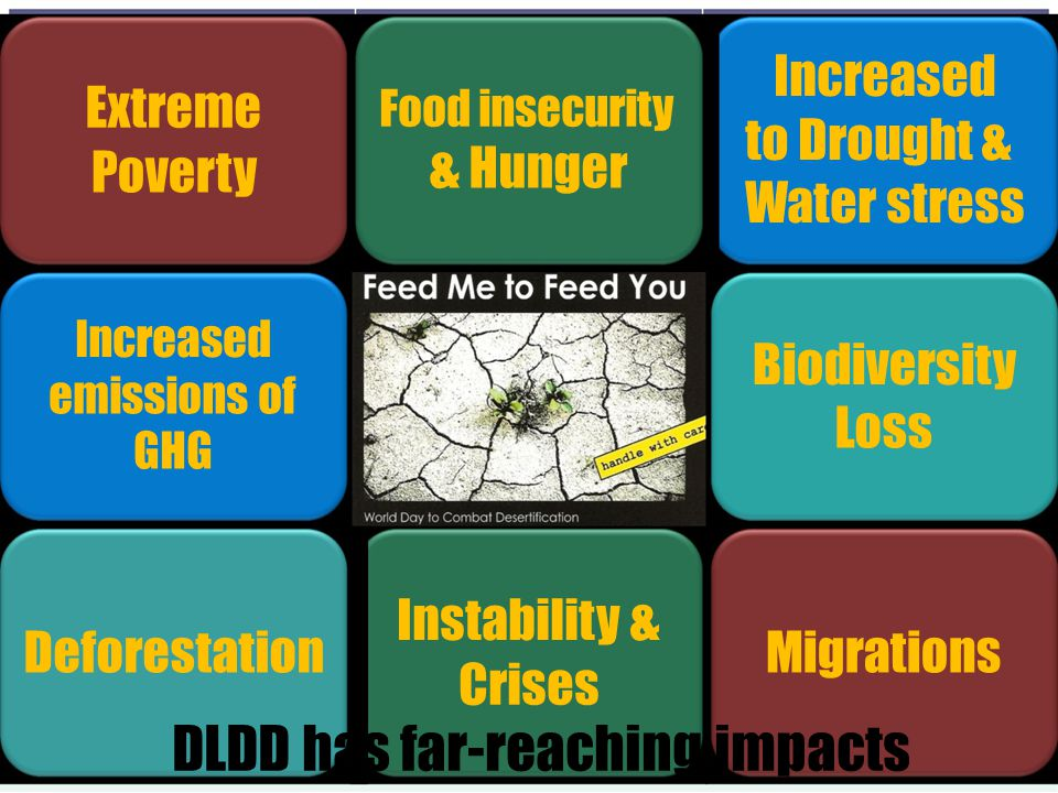 DLDD has far-reaching impacts