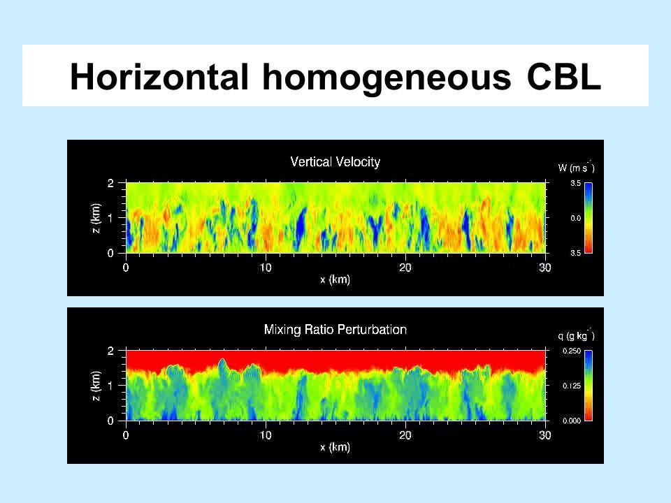 Horizontal homogeneous CBL