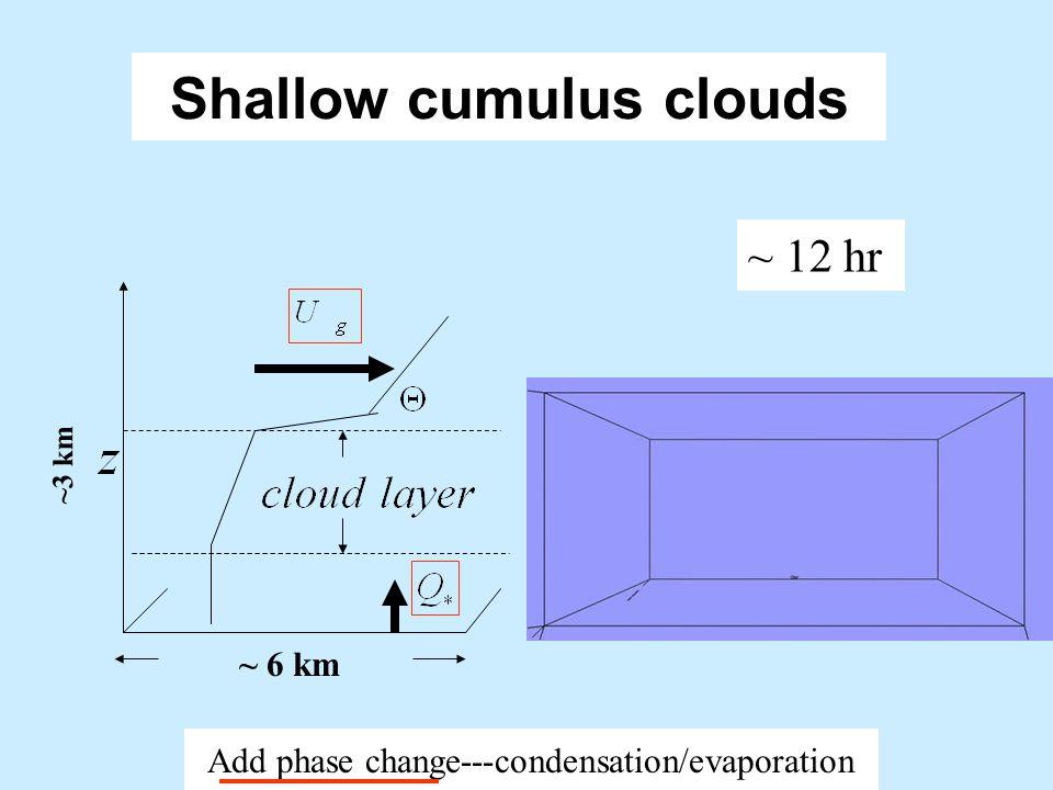 Shallow cumulus clouds