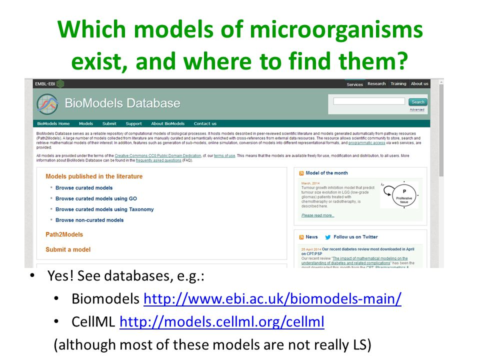Which models of microorganisms exist, and where to find them
